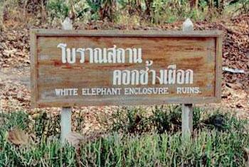 คอกช้างเผือก (พะเนียด)