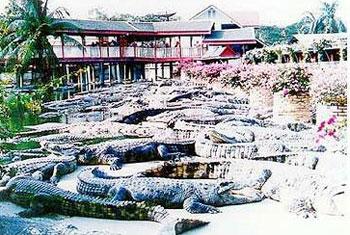 ฟาร์มจระเข้และสวนสัตว์สมุทรปราการ