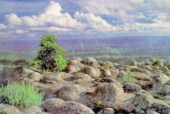 อุทยานแห่งชาติภูหินร่องกล้า