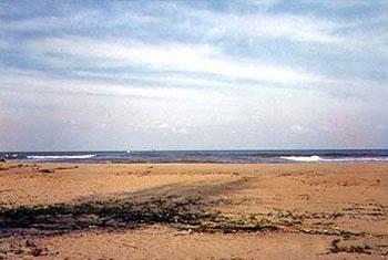 หาดวาสุกรี หรือหาดปาตาติมอ